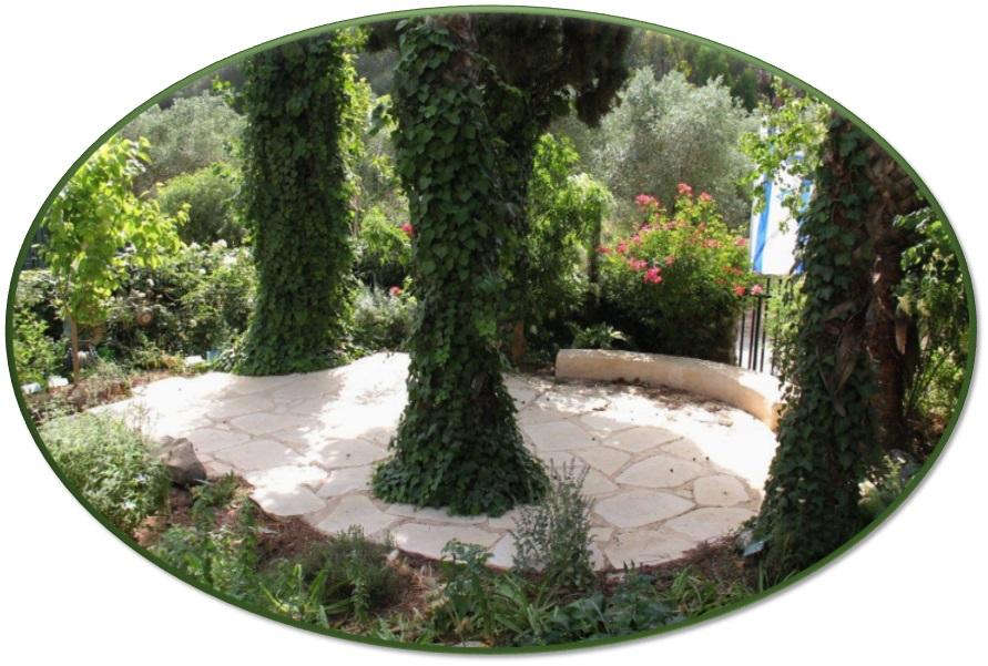 סודות הגן הרפואי - ברא צמחים
