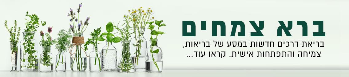 חזון ברא צמחים